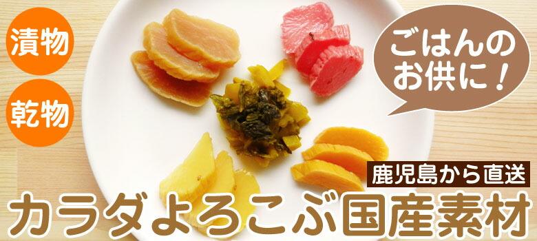 鹿児島から直送 国産野菜のお漬物