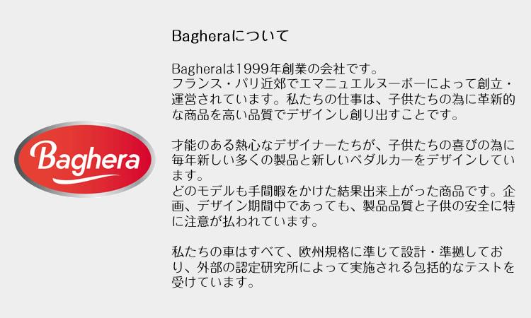 bagheraとは