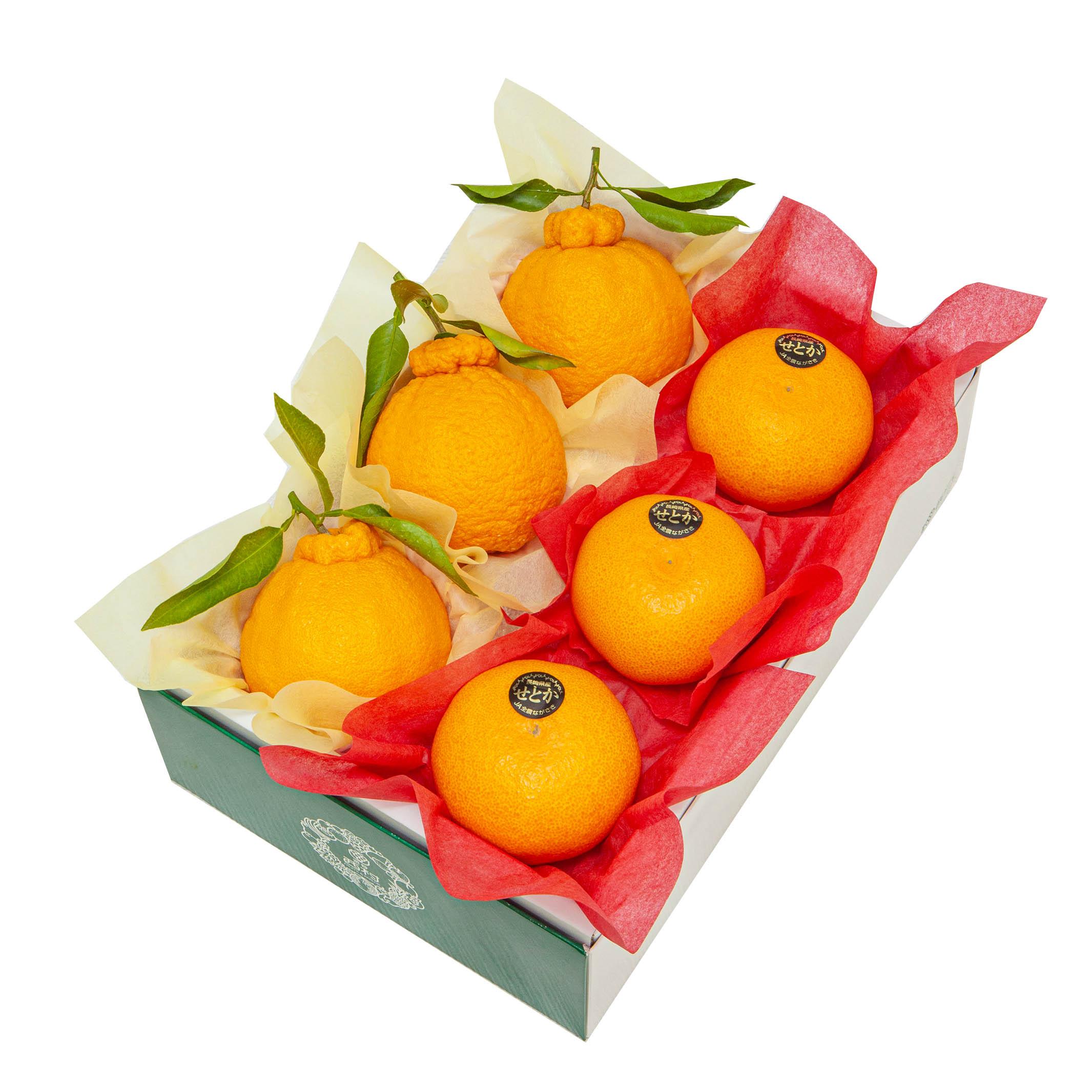 国産柑橘 詰合せ デコポン せとか