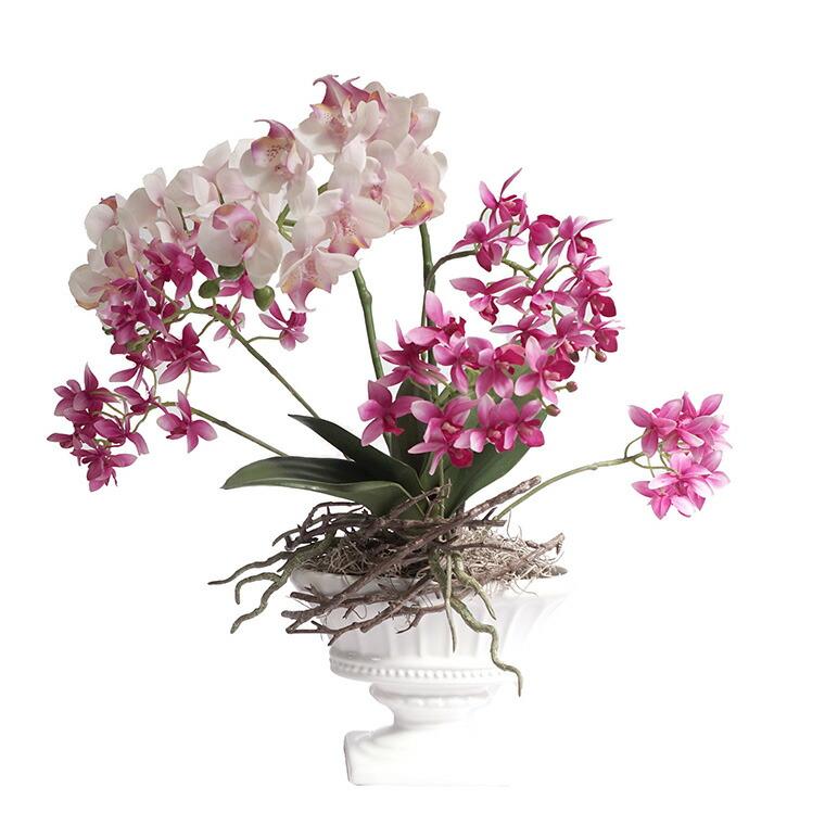 胡蝶蘭と洋蘭の寄せ植え