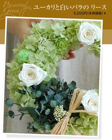ユーカリと白いバラの リース
