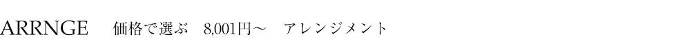 価格で選ぶ5000円以下