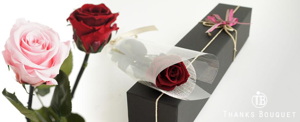 1輪の薔薇