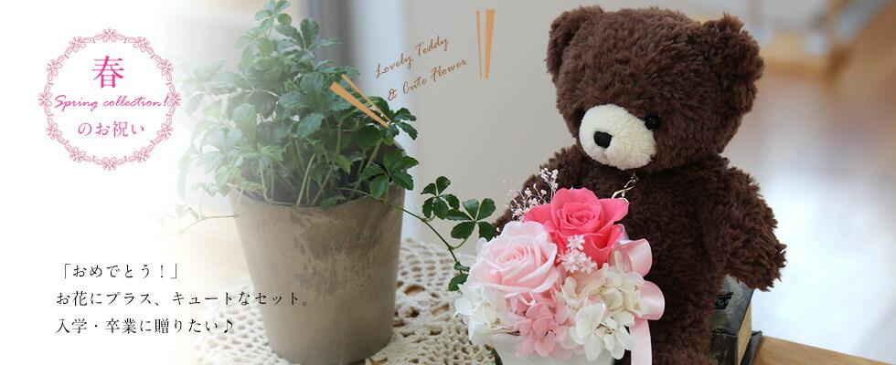 テディ&花