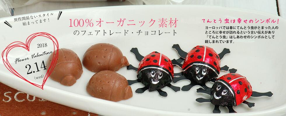 てんとう虫チョコレート