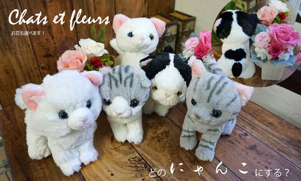 花と猫のセット