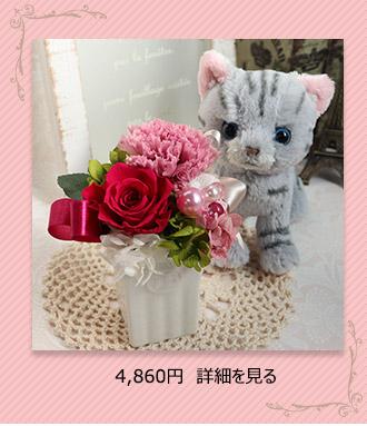 猫と花セット