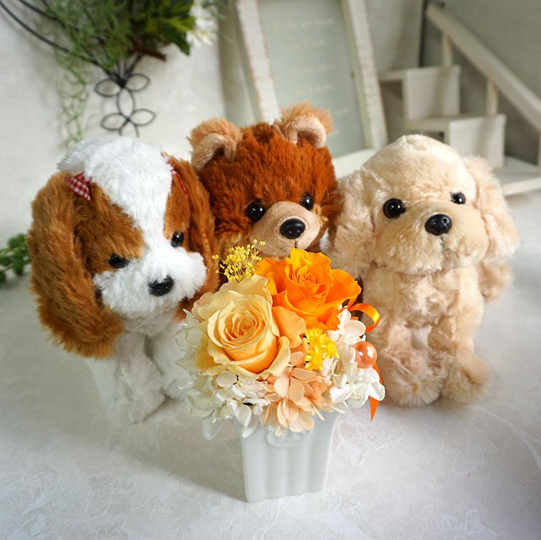 犬とお花のセット