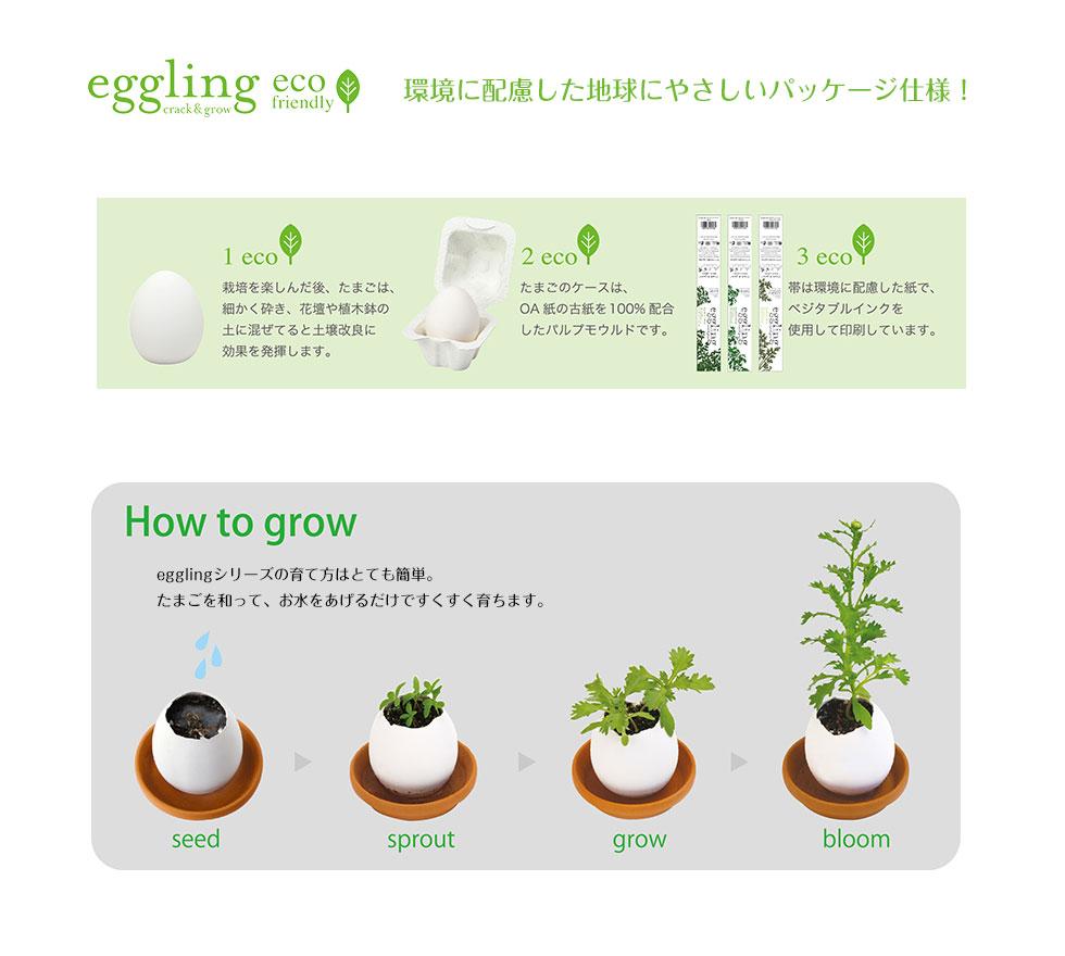 エッグリング 育てるたまご 栽培キッド eggling バジル