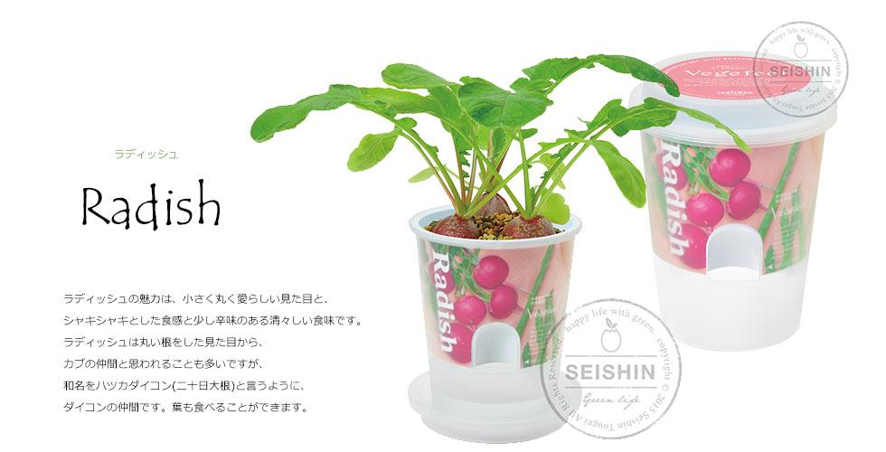 野菜 栽培キット ベジフィール vegefeelは、キッチンなどで野菜を育てられるキットです。