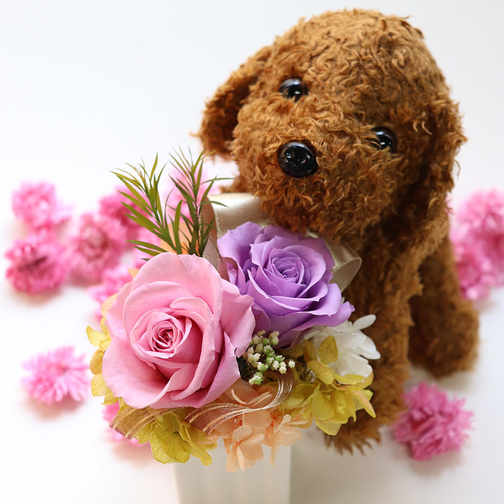 くまちゃんの花束