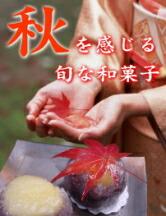 秋・栗の和菓子