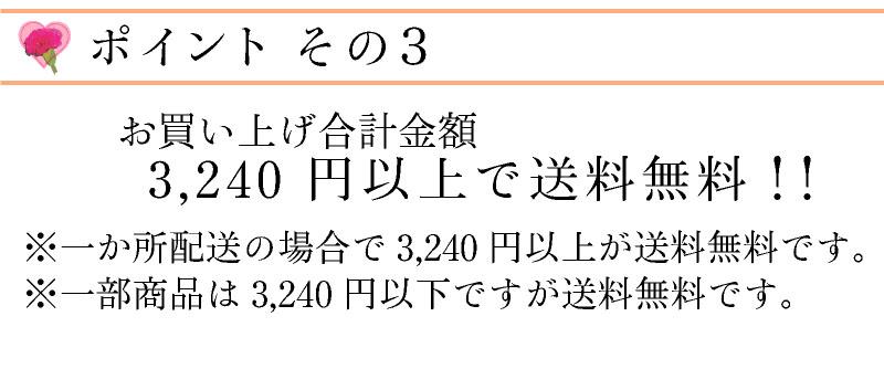 税抜き3000円以上で送料無料ですよ!