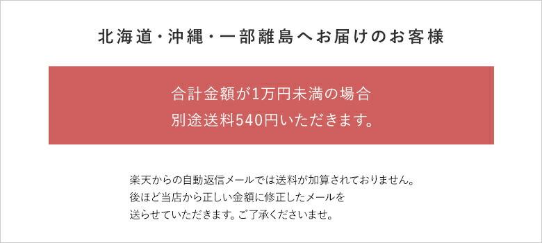 北海道・沖縄・一部離島は別途送料540円がかかります。