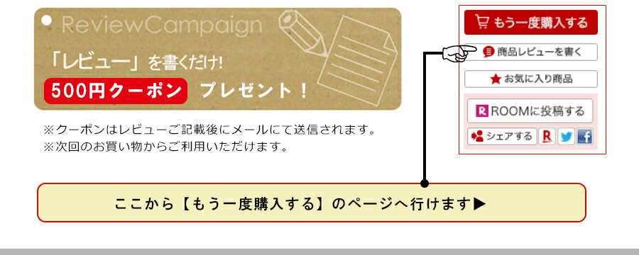 レビューを書いたら500円クーポンプレゼント