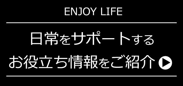 ENJOY CAR LIFE