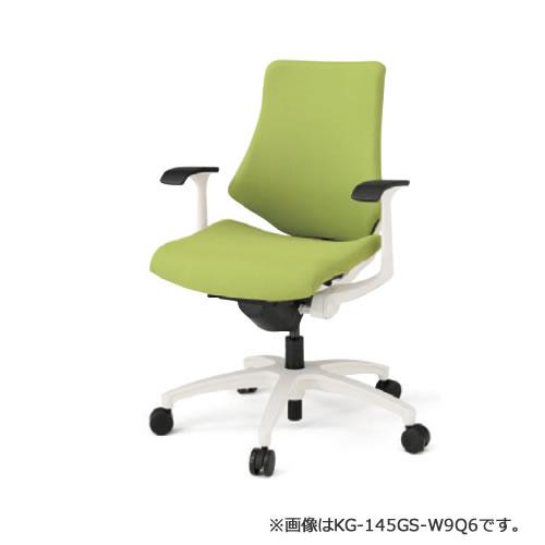 KG-145GS-W9