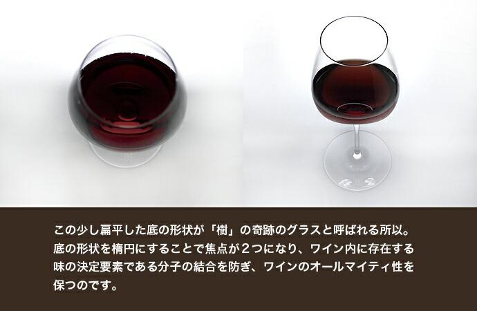 この少し扁平した底の形状が「樹」の奇跡のグラスと呼ばれる所以。 底の形状を楕円にすることで焦点が2つになり、ワイン内に存在する 味の決定要素である分子の結合を防ぎ、ワインのオールマイティ性を 保つのです。