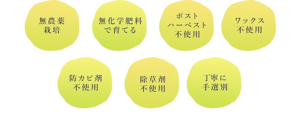 7つのコンセプト