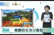 テレビ東京「モーニングチャージ」で「軌跡のミカン会社」として紹介されました。