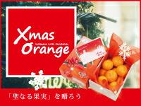 クリスマスオレンジ