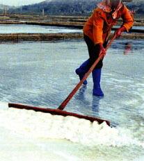 純粋な天然海塩