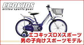Eco-kids sports DX sports