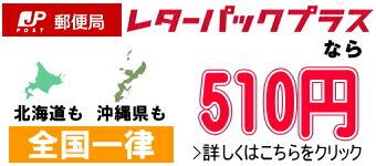 レターパックプラスなら厚さ制限なしで全国一律510円!