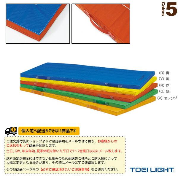 [送料別途]抗菌エコカラーコンビネーションマット5cm厚/ノンスリップ/120×240×5cm(T-1893)