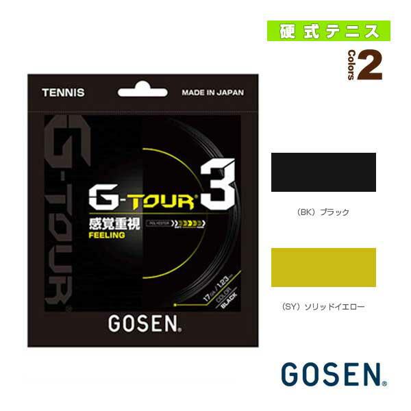 G-TOUR3/ジー・ツアー・スリー(TSGT30/TSGT31/TSGT32)