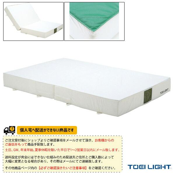 [送料別途]二つ折りノンスリップ・ポリエステル帆布エバーマット室内用(G-2025)専用交換袋・外被のみ(G-2025A)