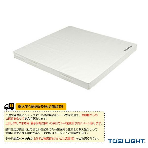 [送料別途]柔道用投込みマット(T-1844)