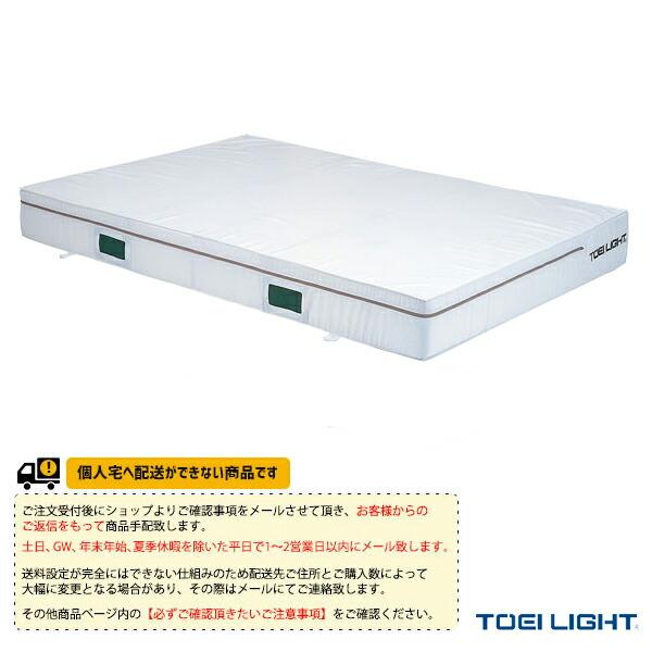 [送料別途]防炎抗菌エバーマット/ポリエステル帆布/屋内用/150×200×20cm(G-1451)