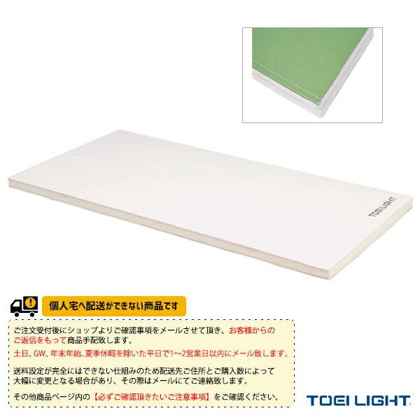 [送料別途]ソフト軽量マット5cm厚(9号帆布)・すべり止め付/90×180×5cm(T-1795)