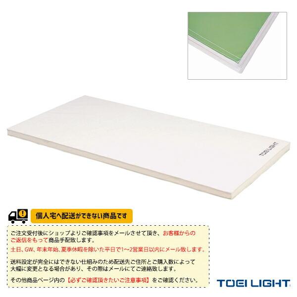[送料別途]ソフト軽量マット5cm厚(9号帆布)・すべり止め付/120×240×5cm(T-1796)