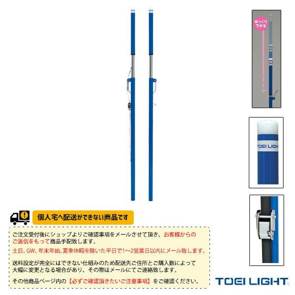 [送料別途]ソフトバレー・バドBT(検)/2本1組(B-2748)