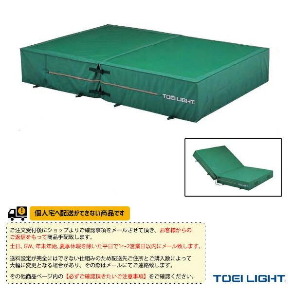 [送料別途]防水ポリエステル帆布上部メッシュ・二つ折りエバーマット屋内外兼用(G-1559)専用交換袋・外被のみ(G-1559A)