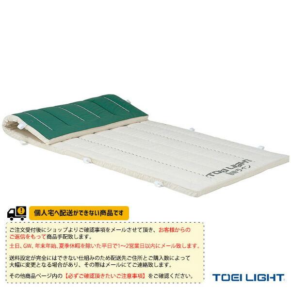 [送料別途]5cm厚ノンスリップ指導ライン入り合成スポンジマット 9号帆布/120×300×5cm(T-1978)