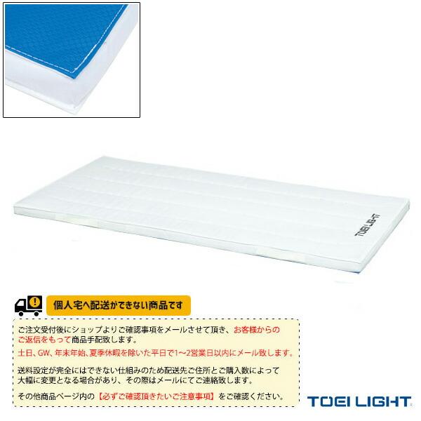 [送料別途]エステル2号帆布ノンスリップコンビネーションマット/90×180×5cm(T-1258)