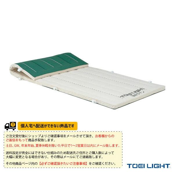 [送料別途]5cm厚抗菌ノンスリップコンビネーションマット 9号帆布】120×600×5cm(T-1291)