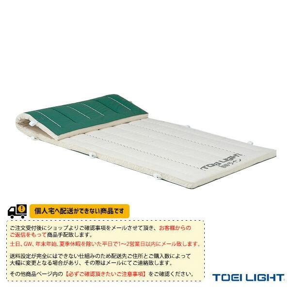 [送料別途]5cm厚抗菌ノンスリップコンビネーションマット 9号帆布/150×600×5cm(T-1292)