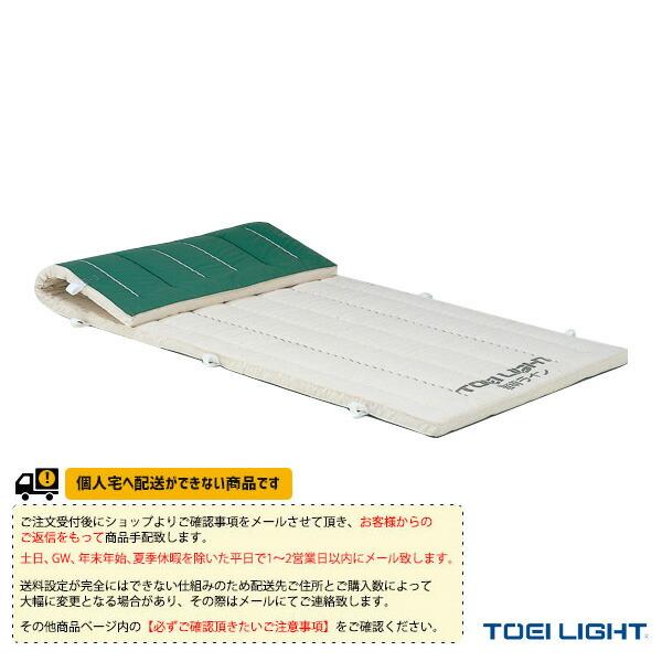 [送料別途]6cm厚抗菌ノンスリップコンビネーションマット 6号帆布/120×600×6cm(T-1296)
