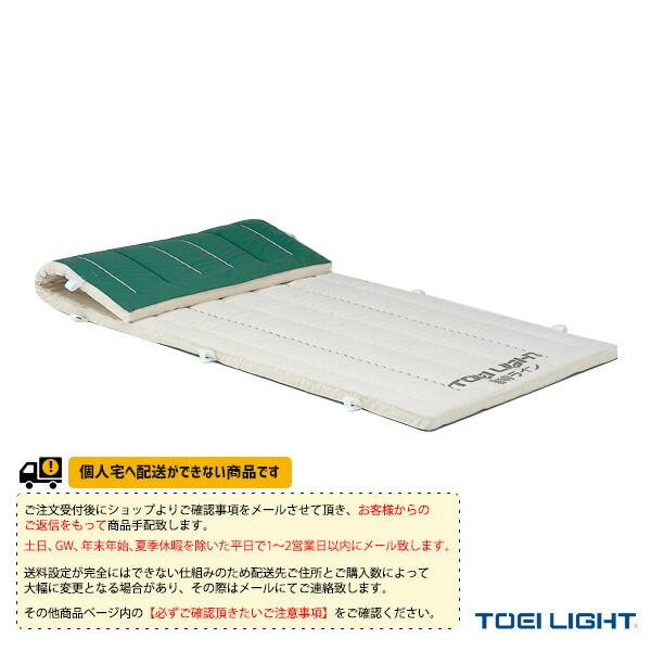 [送料別途]5cm厚ノンスリップ指導ライン入りコンビネーションマット 9号帆布/120×300×5cm(T-1333)