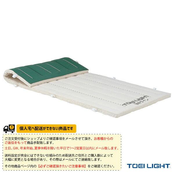 [送料別途]5cm厚ノンスリップ指導ライン入りコンビネーションマット 9号帆布】120×600×5cm(T-1334)