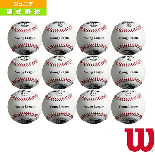 全日本少年硬式野球連盟(ヤングリーグ)試合球/硬式試合球『1ダース(12球)』(WTA1078R)