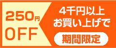 4千円お買い上げで250円OFFクーポン