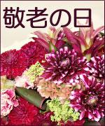 敬老の日 おじいちゃん おばあちゃん ありがとう 花 フラワーギフト