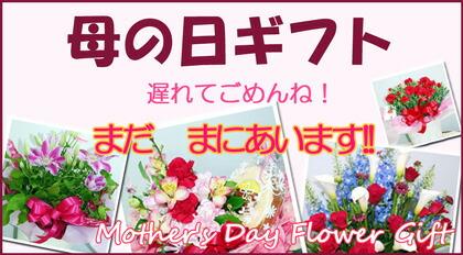 おかあさん 遅れてごめんね  母の日 mother's day スタジオHiroのフラワーギフト