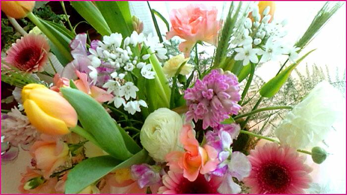 楽天市場,通信販売,通販,ショッピング,オンラインショッピング,買い物,プレゼント, ギフト,贈り物,贈答品,お買い得,花の贈り物,フラワーギフト,アレンジ,花束,鉢花,寄せ植え, スイーツセット 花,プリザーブドフラワー,フラワーケーキ,花苗,おしゃれな花屋, センスの良い,誕生日,お供え,寄せ鉢,フラワーボックス,バルーンフラワー, 季節の寄せ植え あす楽 鉢花 寄せ植え ギフト