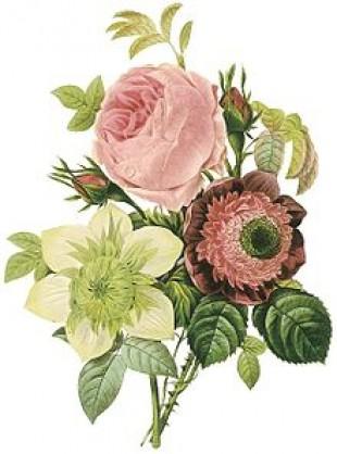 2018年  ルドゥーテ 壁掛けカレンダー大判 薔薇の香り付き 平成30年度  14枚つづり 日本製